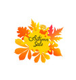 autumn sale hand-drawn text with yellowed leaves vector image vector image