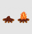 campfire isolated on transparent background vector image