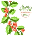 Christmas mistletoe branch drawing vector image vector image