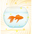 gold fish 02 vector image vector image
