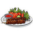 hot grilled kebab vector image vector image