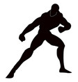 martial arts vector image vector image