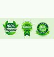 natural organic product green labels design vector image
