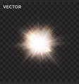 starburst transparent flash light vector image