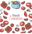 tomato fresh sauce with garlic background banner vector image