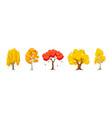 cartoon autumn tree set aspen birch oak maple vector image