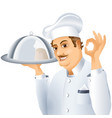 chef tray dish vector image vector image