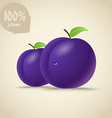 Fresh violet plums vector image
