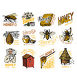 honey and bees set beekeeper man and honeycombs vector image vector image