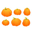 set of gradient orange pumpkin autumn design vector image