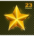 Gold star on transparent background Defender of vector image vector image