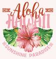 hawaii sunshine paradise hibiscus plant vector image