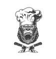 vintage angry chef gorilla head vector image vector image