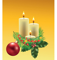 christmas candles branche vector image vector image