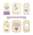 set of vintage labels and tags with lavender vector image vector image