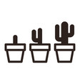 cactus in pot set vector image
