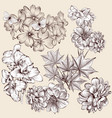 collection of high detailed flowers for design vector image vector image