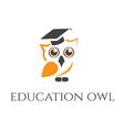 concept of owl in graduate hat vector image