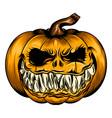 scare pumpkin for halloween season vector image vector image