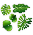 Sticker set of green leaves vector image vector image