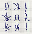 wheat branches on notebook page vector image vector image
