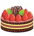 fruit cake vector image