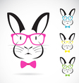 image of a rabbits wear glasses vector image