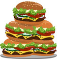 a lot of hamburgers on a plate vector image vector image