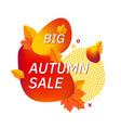 autumn fall season abstract background vector image