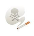 Cigarette smoke vector image vector image