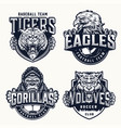 football and baseball clubs vintage emblems vector image vector image