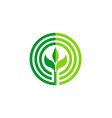 green leaf round seed organic logo vector image