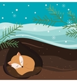 Let it snow Fox sleeping in the hole vector image vector image
