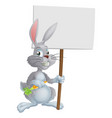 white easter bunny rabbit sign vector image vector image
