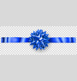 blue shiny bow with horizontal ribbon vector image vector image