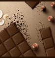 chocolate bar with nuts vector image