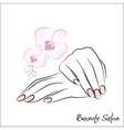Female hands manicure vector image vector image