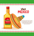 mexican culture traditional hat and tequila vector image vector image