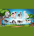 set od black and white animal vector image vector image