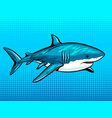 shark comic book style vector image vector image