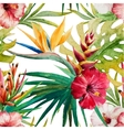 Sterlitzia tropical pattern vector image