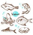 vintage hand drawn fish vector image vector image