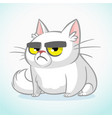 cartoon of grumpy white cat vector image