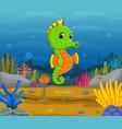 cartoon tropical sea horse vector image vector image