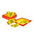 Chinese Gold and Joss Paper for Chinese New Year vector image vector image