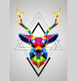 colorful deer low poly design vector image