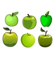 Fresh green apples fruits set vector image vector image