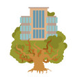 house on tree office buildings on oak alligory vector image vector image