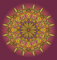 mandala round ornament green pattern on a lilac vector image vector image