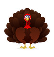 cartoon turkey with feathers thanksgiving card vector image vector image
